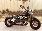 Harley springer crossbones bobber 2010