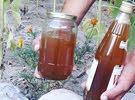 عسل الطبيعي الجبلي اصلي  honey