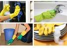 متخصصون في تنظيف الفلل وأباده الحشرات