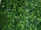توريد وتركيب العشب الصناعي