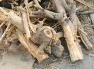 خشب (حطب) للبيع قابل لتفاوض