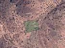 قطعة أرض زراعية مميزة في جرش، المجدل للبيع بسعر تفضيلي و مميز