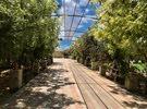 مزارع للبيع في عجمان تملك حر