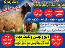 غنم للبيع مع التوصيل 60777317مجانا جميع مناطق الكويت