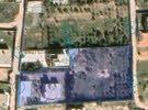 مزرعة نصف هكتار للبيع عين زارة القبائلية قرب مسجد عمرو بن الخطاب