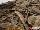 اجود انواع العود الماليزي من غابات صباح سرواك ذو رائحة مميزة ونقية