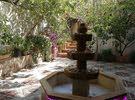 شقة ارضية مميزة 300م +ترس+كراج+حديقة باشجار مثمره في موقع مميز وهادئ في طبربور