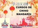 معلم لغة صينية ،دورات HSK