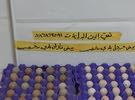 بيض حجل بلدي وبيض فازان بلدي