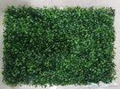 عشب جداري نوعيه ممتازه * عرض حتى نفاذ الكمية