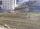 أرض للبيع المستعجل 507 م الجبيهة ابو العوف قريب شارع الاردن