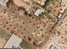 قطعة ارض مساحة 2 هكتار للبيع بمنطقه الكريميه