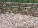 ارض للبيع في الدجنيه الرحاب مساحة3400 متر تبعد عن الشارع الرئيسي حوالي 2كيلو