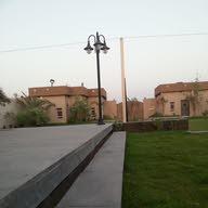 الدورادو