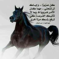 الفارس
