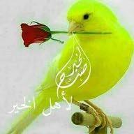 حمدالله الحجاج