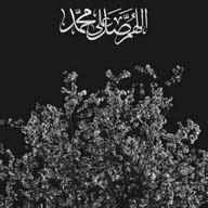 hazem mohammed