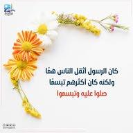 Amr  Saleeh