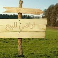 سامى محمد العزب