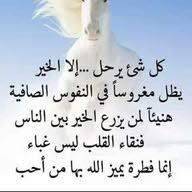 وائل الشريف