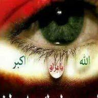 جعفر محمد