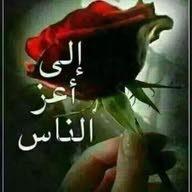 AMER Mohamed