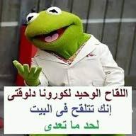 علي المصري