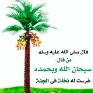 mahmuod AL Alwany