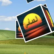 احمد العمامي