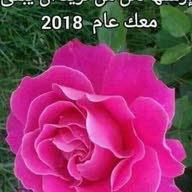 سالم ابو احمد