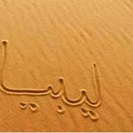 mohamed salm