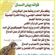 عبدلله محمد