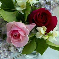 مشغل همسات الورد