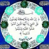 ahmed shawki