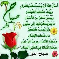 حجي محمد