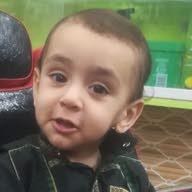 محمد الاسد