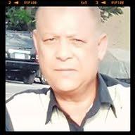 وائل حافظ محمود