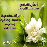 Tamer Ali