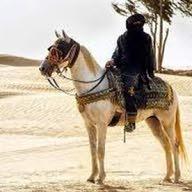 فارس الصحراء