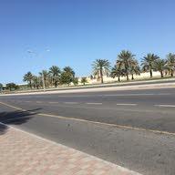 Al Reem