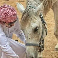 Naif ALHARBI