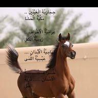 samir  hijazi