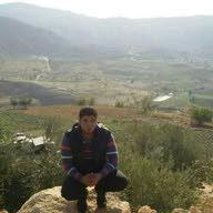 Mahmood Ashour
