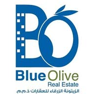 Blue Olive Real Estate