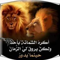 فواز بكير أبو عبدالرحمن