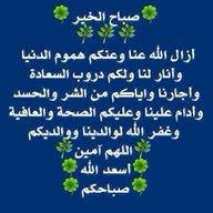 محمد السيد السيد