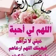 ابو ناصر