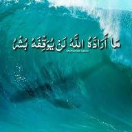 haya mohammad