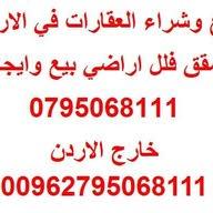 علاء القضاه