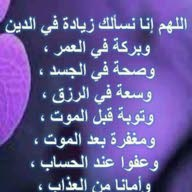 احمد النسور